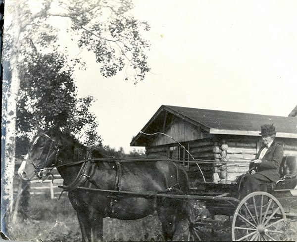 Anne and Alfred's log house: Part of it had two stories. Anne is seated in the buggy