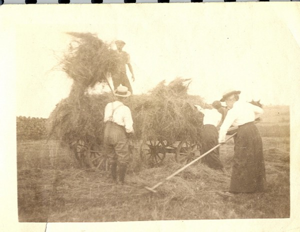 Haying - Alfred, Annie, Robert