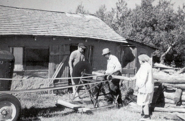 Year: circa 1960 Place Name: Hafford Sawing wood on family farm in front of mud plastered chicken coop.