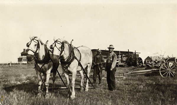 "Gord and ""Bill"" in the machine yard Year: c. 1905 Place Name: Estevan The nigh horse is Major. The other is a new one."