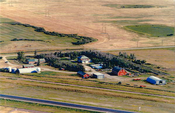 Gallaway Farmstead Year: 1989 Place Name: Estevan