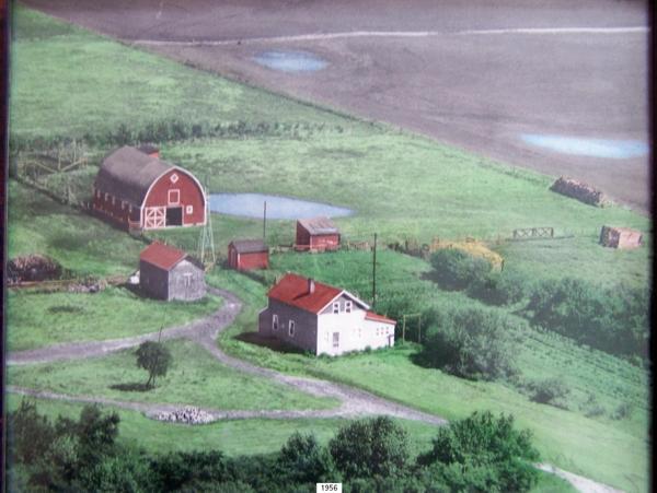 Nachtegale Family Farm Year: 1956