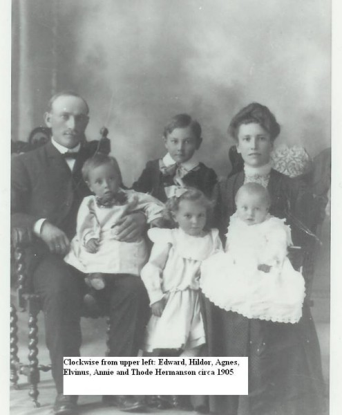 Hermanson Family Year: circa 1905 Clockwise from upper left: Edward, Hildor, Agnes, Elvinus, Annie, and Thode Hermanson