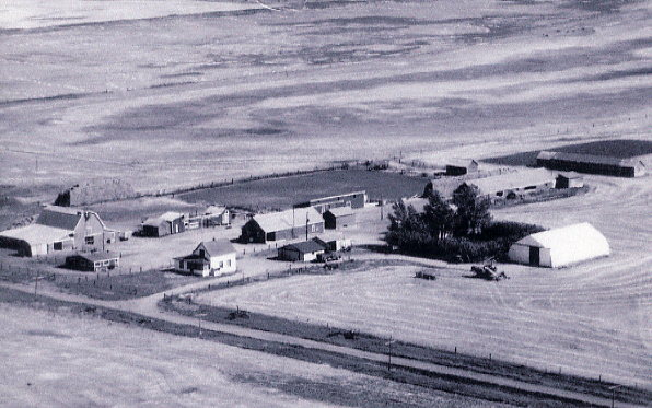 Lehnus Farmstead Year: 1958