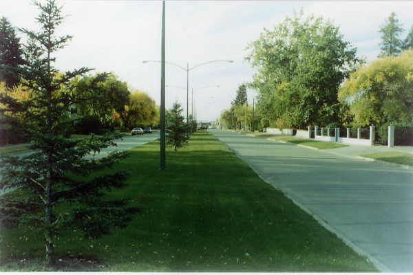 Wide streets and attractive boulevards Year: 1995 Place Name: Nipawin - Centre Street Image Source: Lorraine Fox - VHV Photo Lab, Nipawin Visitors to Nipawin are impressed with the wide streets and park-like atmosphere.