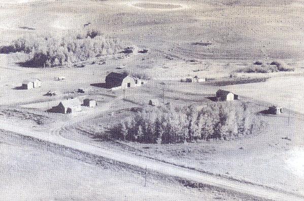 The Niculai Petrar Farmyard Year: 1960 Place Name: Dysart An aerial photo of the farmyard