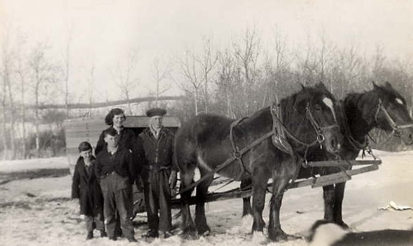 Going to school Place Name: Speers, SK Olive, George, Patrick and Charles Russell with horses, King and Queen