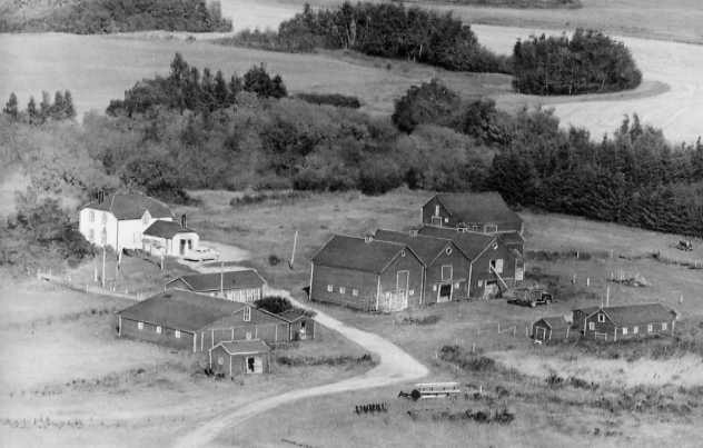 The Farmhouse and Buildings Year: 1950 Place Name: Wauchope Aerial view from the southwest