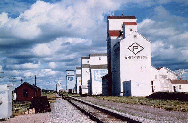 Whitewood Elevator Row - The Glory Years Year: circa 1960 Place Name: Whitewood